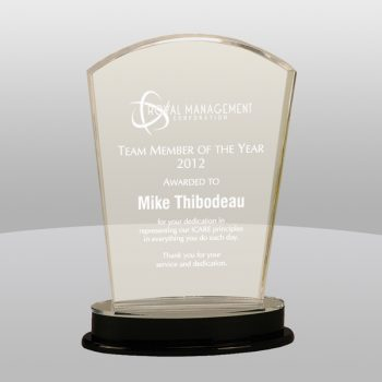 Clear Silver Arch Acrylic Award