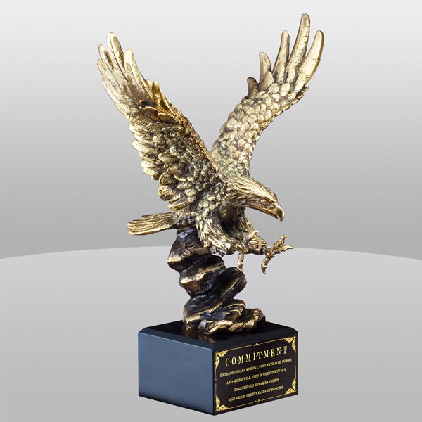Eagle Bronze Award