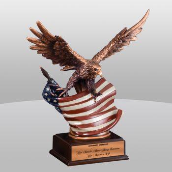 Eagle Flag Bronze Award